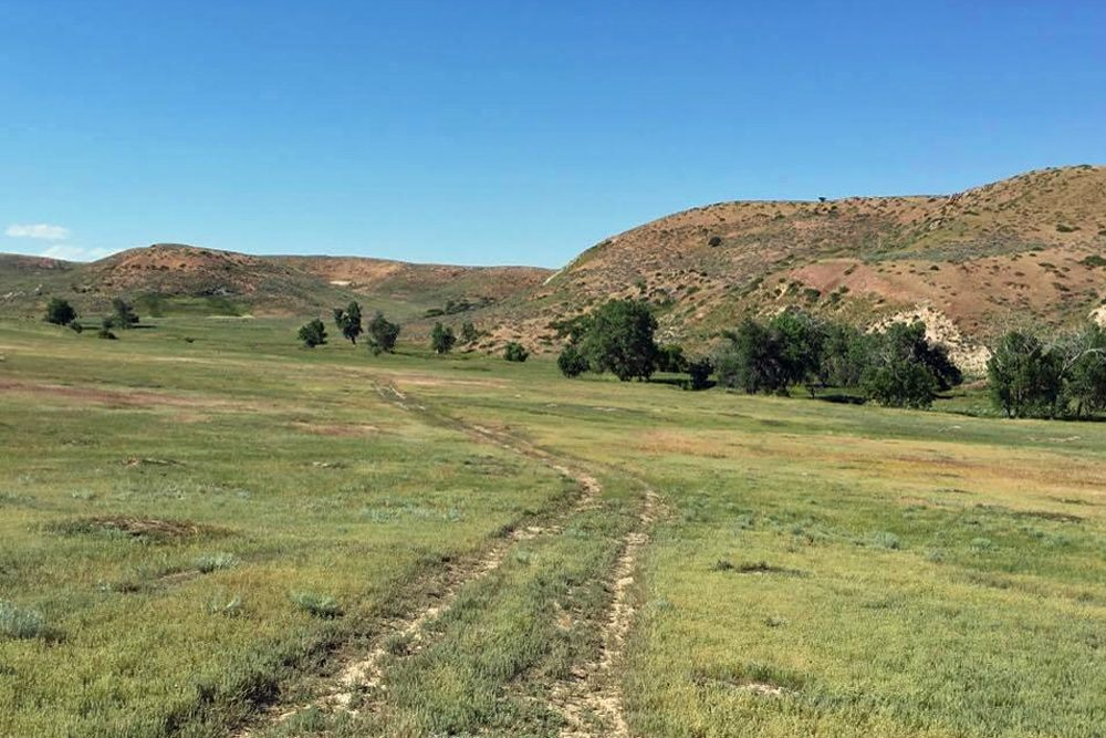 Part of the land where the proposed Brook Mine may be dug. (Cooper McKim/Wyoming Public Radio)