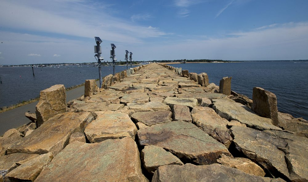 The New Bedford seawall. (Jesse Costa/WBUR)