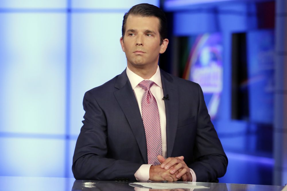 Donald Trump Jr. is interviewed by host Sean Hannity on his Fox News Channel television program, in New York Tuesday, July 11, 2017. (Richard Drew/AP)