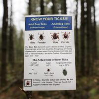 In this 2014 photo, an informational card about ticks distributed by the Maine Medical Center Research Institute is seen in the woods in Freeport, Maine. (Robert F. Bukaty/AP)