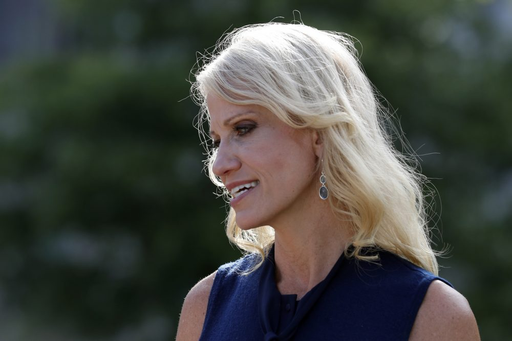 Counselor to the President Kellyanne Conway speaks with a reporter at the White House, Monday, July 10, 2017, in Washington. (Alex Brandon/AP)
