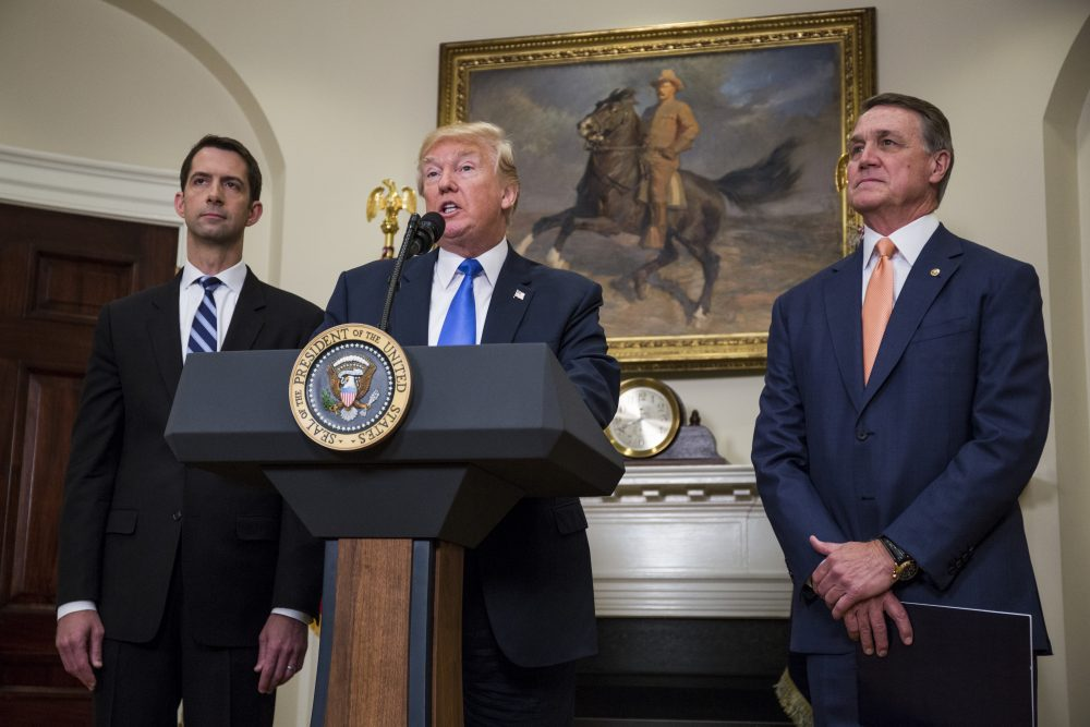 President Trump makes an announcement on the introduction of the Reforming American Immigration for a Strong Economy (RAISE) Act with Sen. Tom Cotton (R-Ark.) left, and Sen. David Perdue (R-Ga.) right, in the Roosevelt Room at the White House on Aug. 2, 2017 in Washington, D.C. (Zach Gibson - Pool/Getty Images)