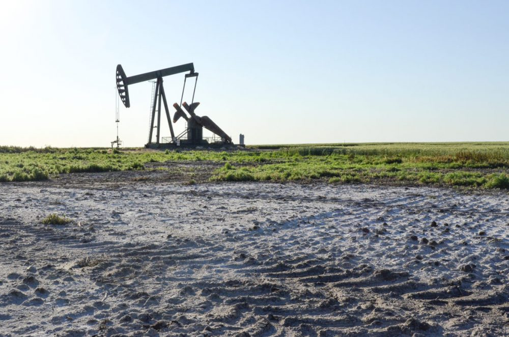 Salty wastewater from pumpjacks like this one near Glenburn, North Dakota, used to be dumped into pits on farmers' land. Over the years, the brine seeped into the surrounding fields. The resulting contamination continues to expand decades later. (Amy Sisk/Inside Energy)