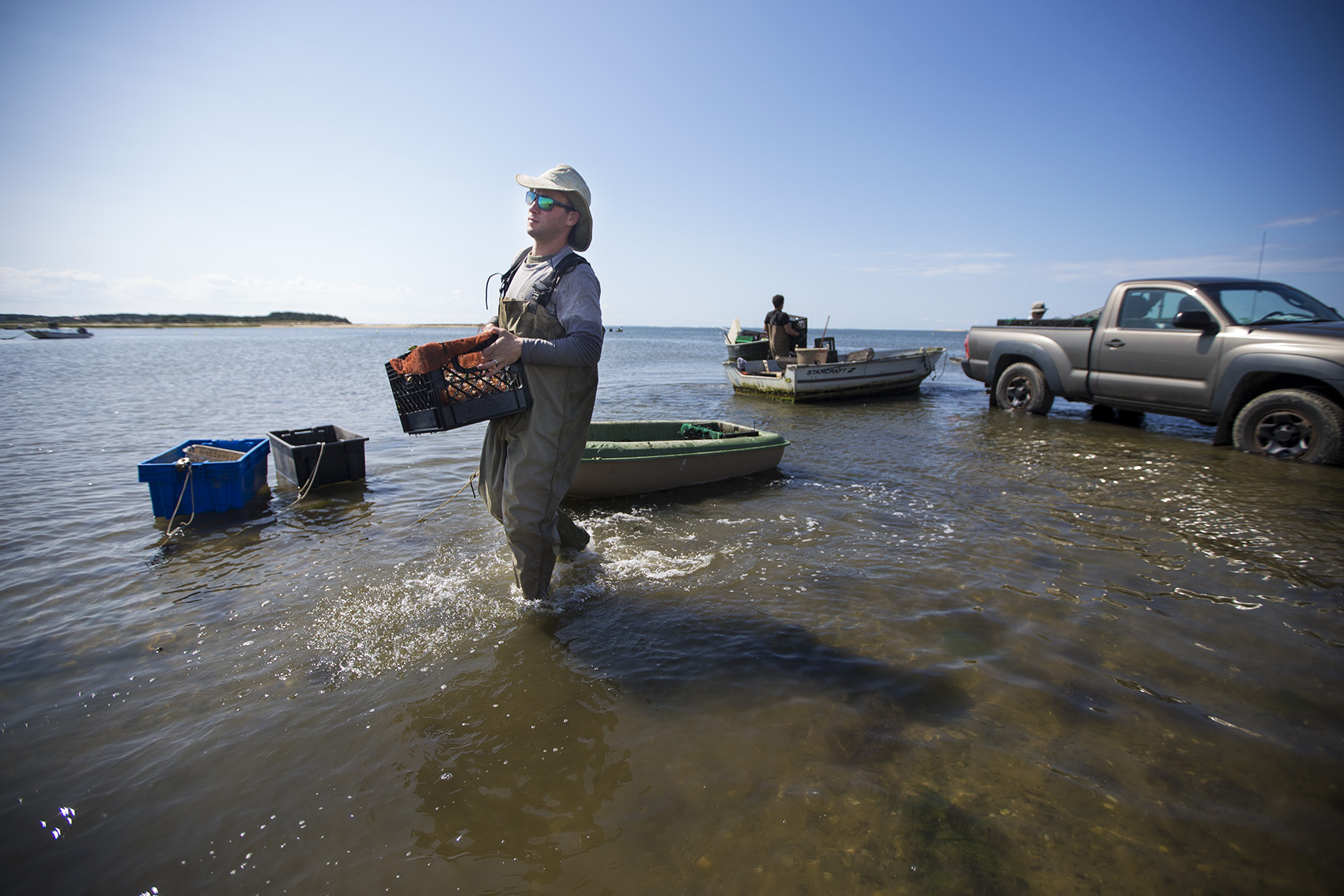 Bacteria That Thrive In Warmer Waters Keep Mass  Oyster