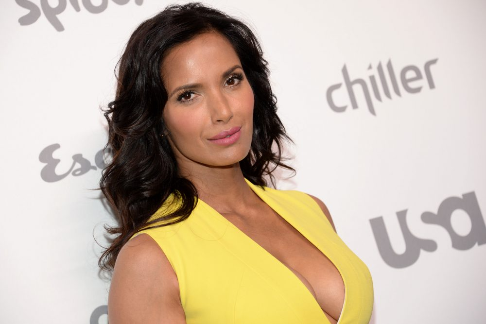 "In a Thursday, May 14, 2015 file photo, television personality Padma Lakshmi attends the NBCUniversal Cable Entertainment 2015 Upfront, in New York. The Teamsters are accused of yelling profanities and racial and homophobic slurs at Lakshmi and the crew of ""Top Chef"" while they filmed at Steel & Rye, a restaurant in the Boston suburb of Milton. (Evan Agostini/Invision/AP)"