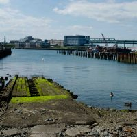 City-owned harbor property behind Shaw's in East Boston. (Elizabeth Gillis/WBUR)