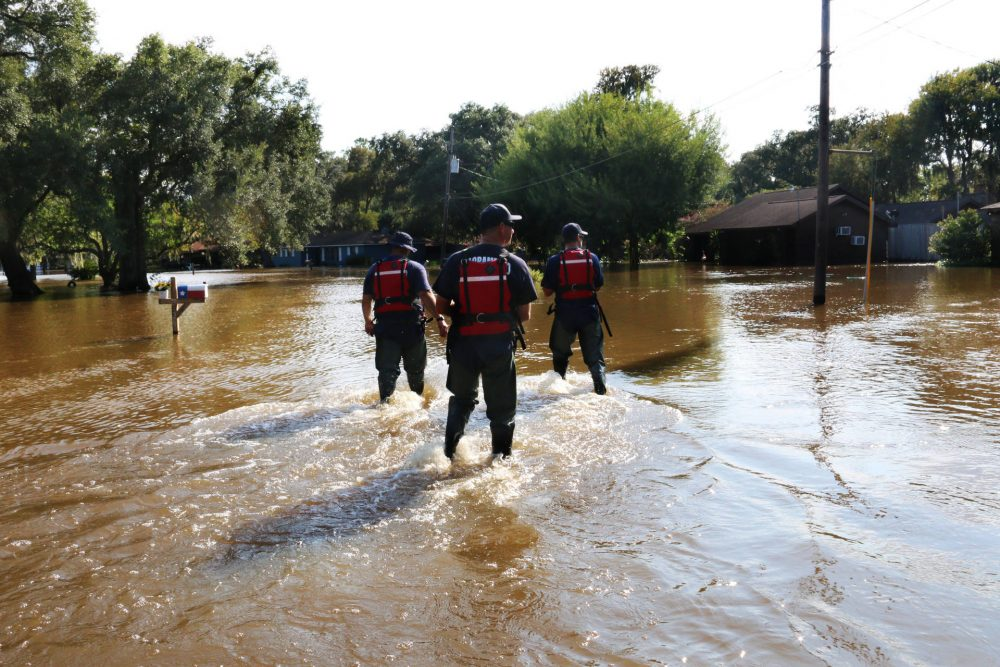 (From Left) Scott Lewis, Mike Wolfe and Dave Lauchner, members of Urban Search and Rescue California Task Force 7 and the Sacramento Fire Department, walk through Richwood, Texas, on Sept. 3, 2017. Richwood is one of many rural communities that continue to see major flooding over a week after Hurricane Harvey hit Texas. (Alex Emslie/KQED)