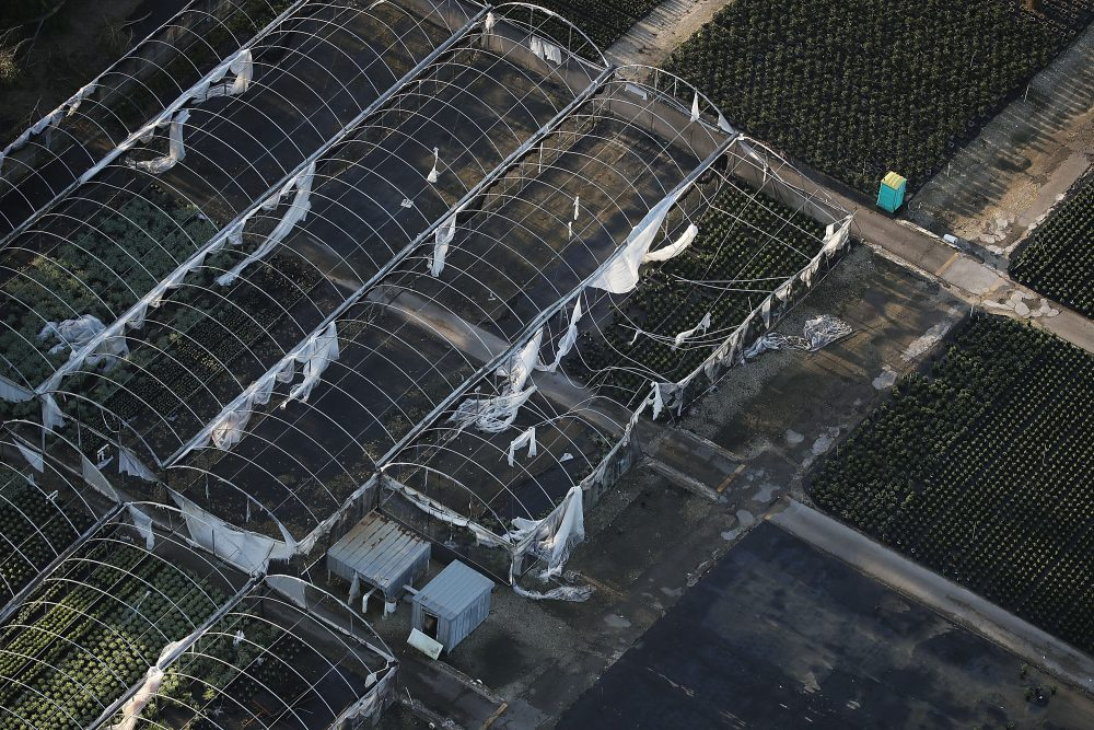 Damaged greenhouses in an agricultural area are seen after Hurricane Irma passed through the area on Sept. 13, 2017, in Homestead, Fla. (Joe Raedle/Getty Images)