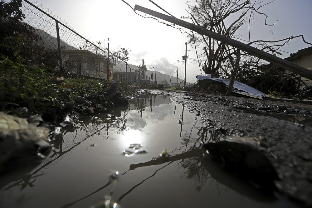 Downed power lines and debris are seen in the aftermath of Hurricane Maria in Yabucoa, Puerto Rico, on Tuesday. (Gerald Herbert/AP)