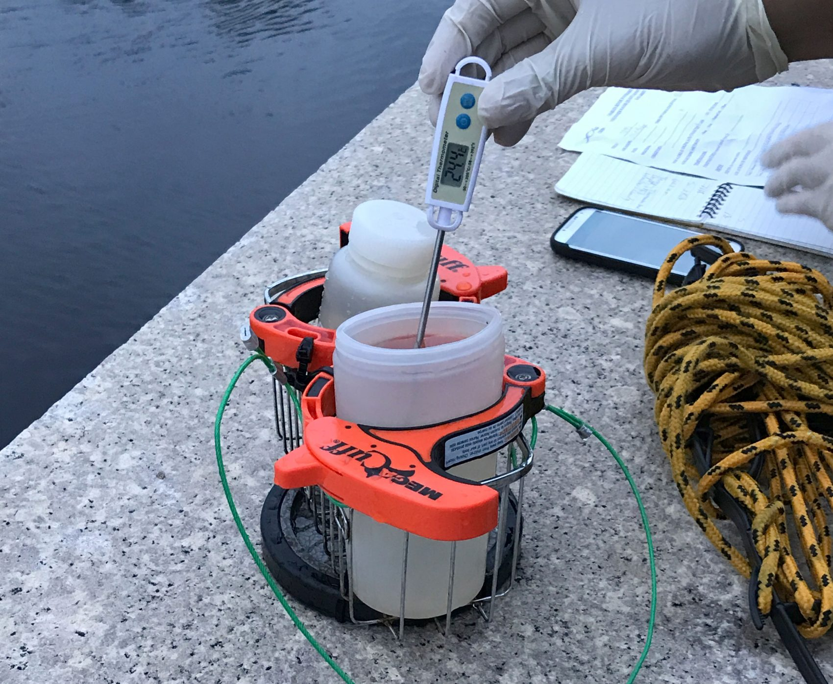How The Charles River's Water Quality Is Monitored — And