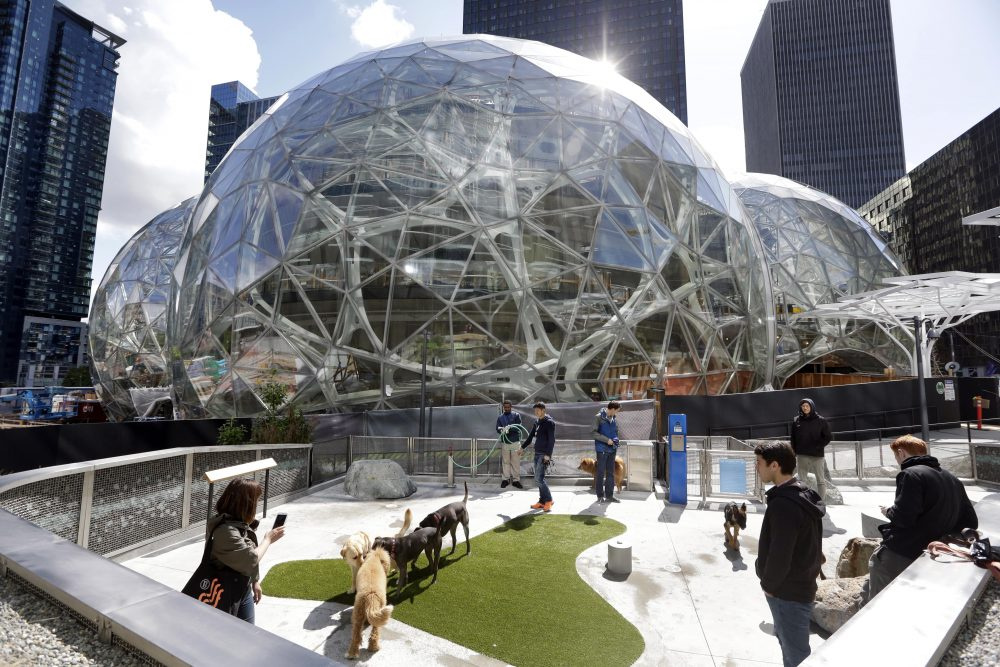 Amazon employees tend to their dogs in a canine play area adjacent to where construction continues on three large, glass-covered domes as part of an expansion of the Amazon.com campus in downtown Seattle this year. (Elaine Thompson/AP)
