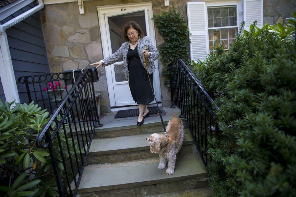 Katie Herzog takes a walk with her dog, Pippen. (Jesse Costa/WBUR)