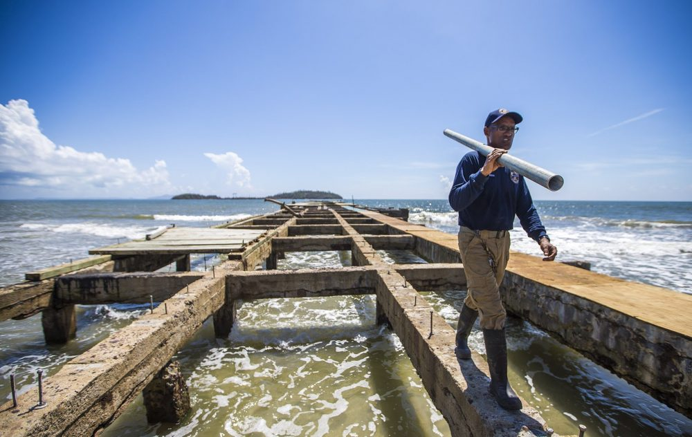A repair worker walks on whats left of the pier at Punta Santiago. (Jesse Costa/WBUR)