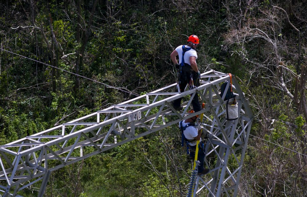 In this Sunday, Oct. 15, 2017 photo, Whitefish Energy Holdings workers restore power lines damaged by Hurricane Maria in Barceloneta, Puerto Rico. (Ramon Espinosa/AP)