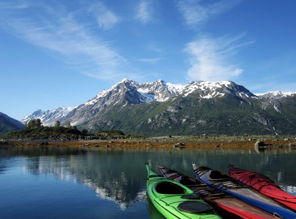 Glacier Bay National Park and Preserve. (Courtesy Brian Buma/University of Alaska Southeast)