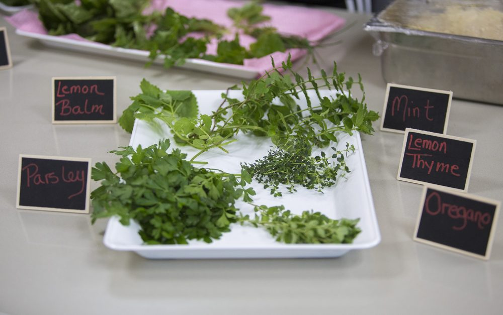 The kids learn how to turn their herbs into pesto. (Jesse Costa/WBUR)