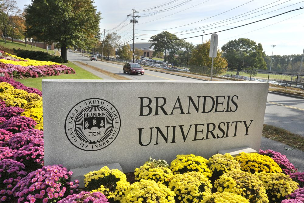 A sign marks the entrance of Brandeis University in Waltham, Mass. in 2010. (Josh Reynolds/AP)