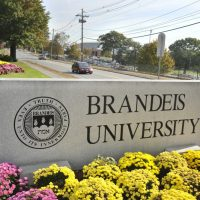 A sign marks the entrance of Brandeis University in Waltham. (Josh Reynolds/AP)