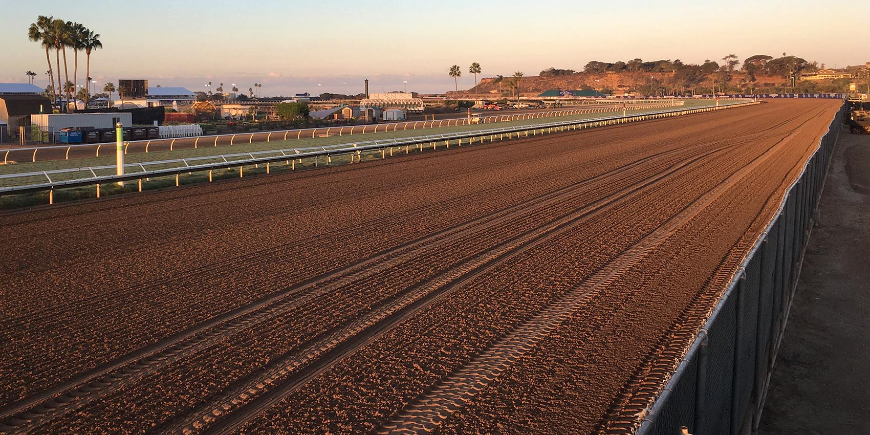 The Del Mar racetrack in Del Mar, Calif., where the 34th Breeders' Cup was held. (Alex Ashlock/Here & Now)