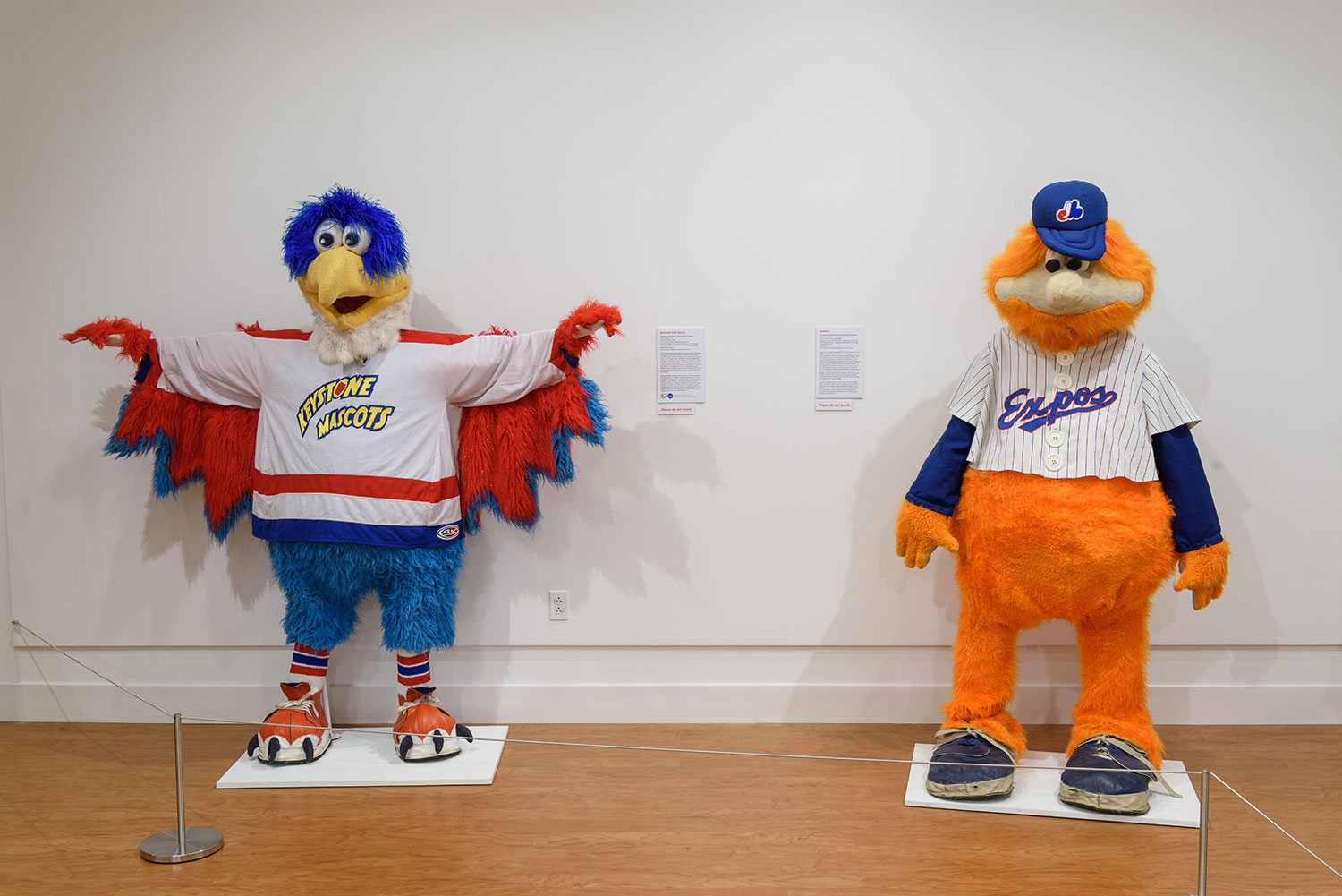 Mascots!' Exhibit Asks Why We Care So Much About These Fuzzy