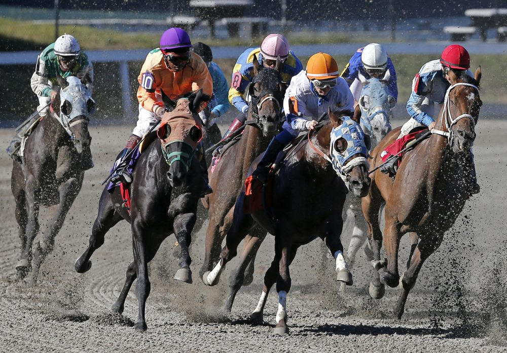 Horses take a turn during a race at Suffolk Downs in Boston, Monday, Sept. 22, 2014. (Elise Amendola/AP)