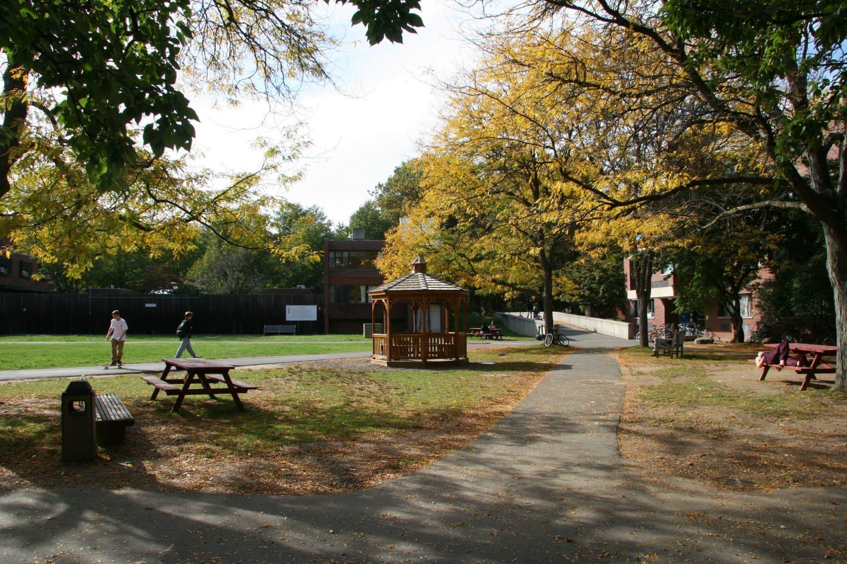 Hampshire College's campus (Courtesy lookcatalog)