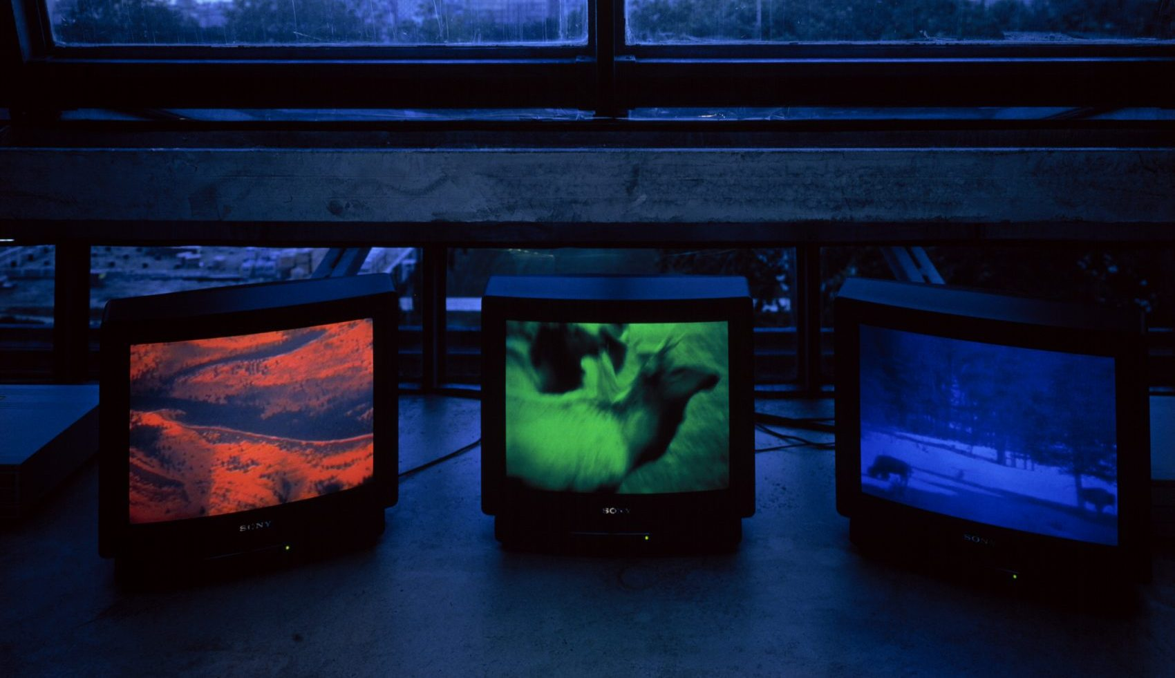 """Diana Thater's """"Snake River,"""" 1994, at the MIT List Center. Three video monitors, three media players, digital files, 30 minutes each. (Courtesy the artist and David Zwirner, New York/London)"""