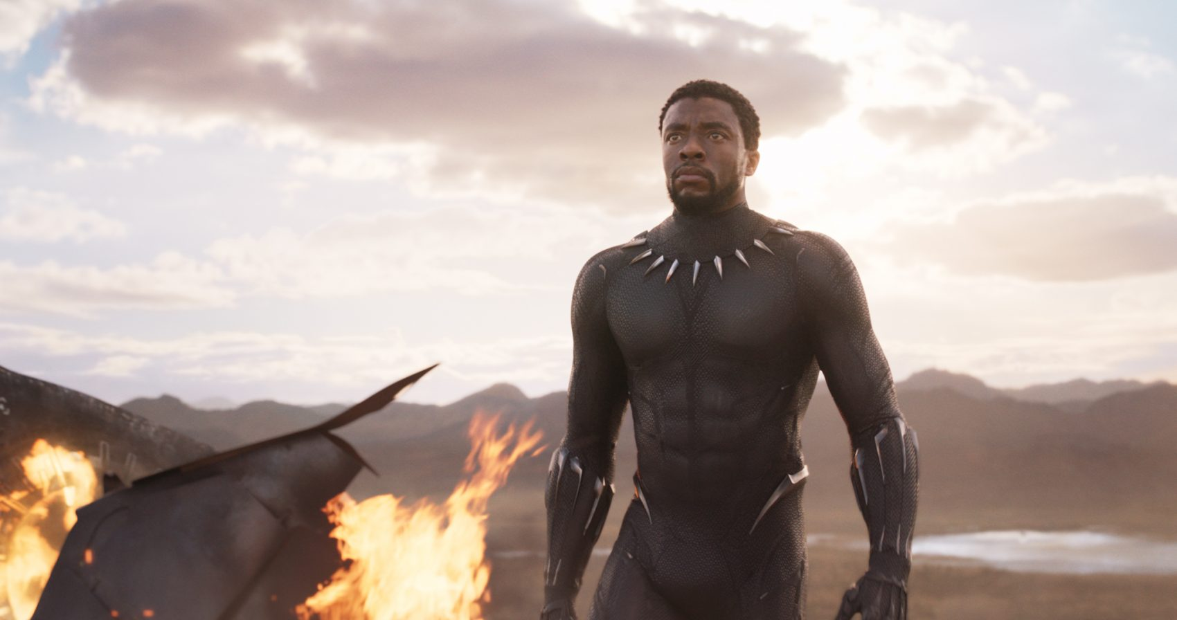 "Chadwick Boseman as T'Challa in ""Black Panther."" (Courtesy Film Frame/Marvel Studios)"