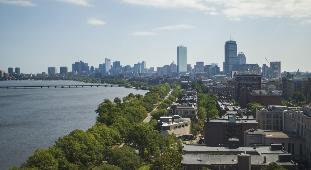 The Boston skyline. (Jesse Costa/WBUR)