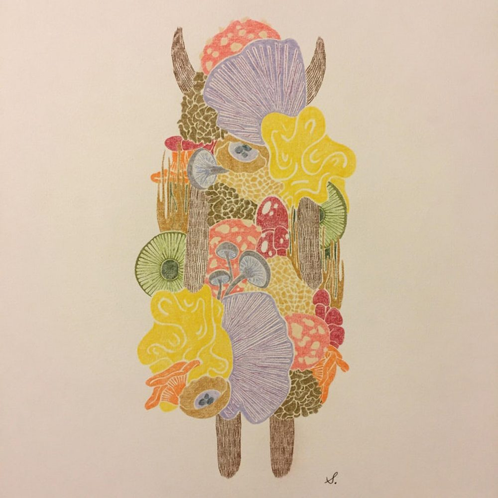 """""""Fungus,"""" colored pencil on paper, by u/Beara. Online at www.beara.space and on Instagram as @yo_beara"""