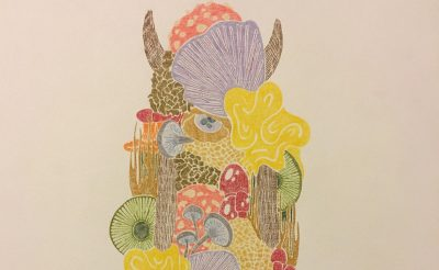 """Fungus,"" colored pencil on paper, by u/Beara. Online at www.beara.space and on Instagram as @yo_beara"