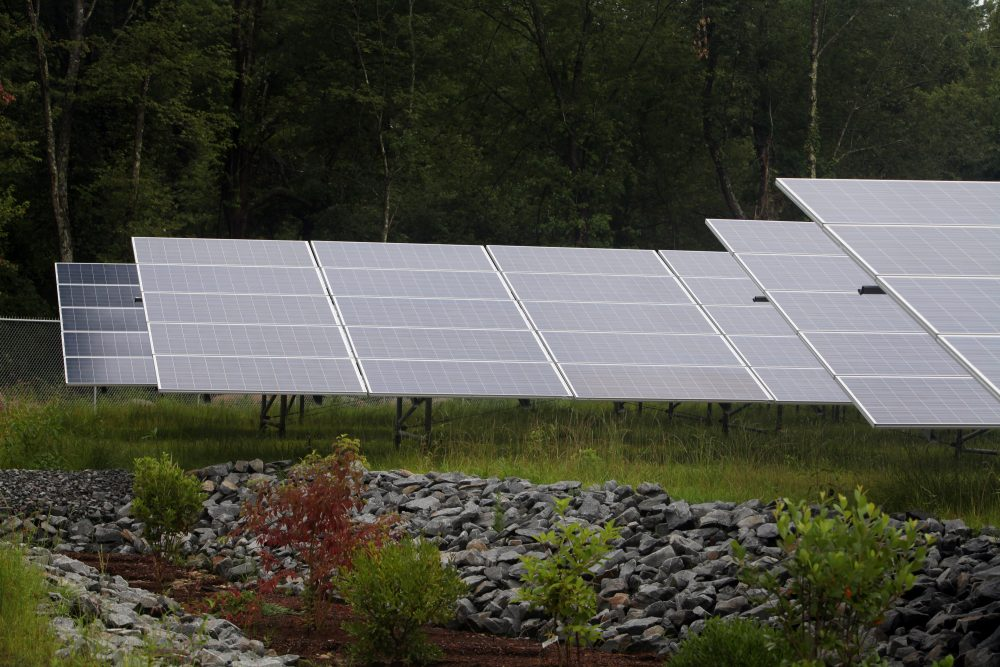A solar project in Freetown, Massachusetts,  in 2015. (Aynsley Floyd/AP for NRG)