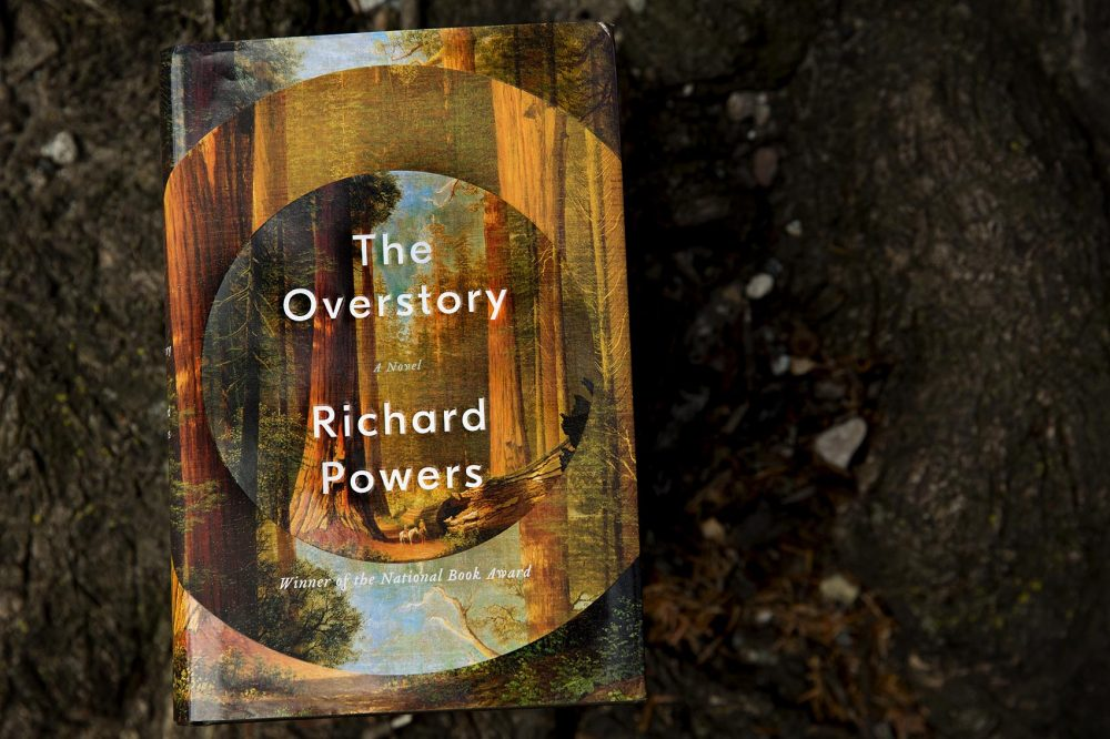 The Overstory, by Richard Powers. (Robin Lubbock/WBUR)