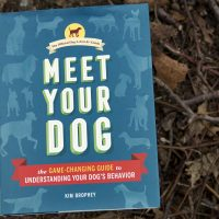 """Meet Your Dog,"" by Kim Brophey. (Robin Lubbock/WBUR)"