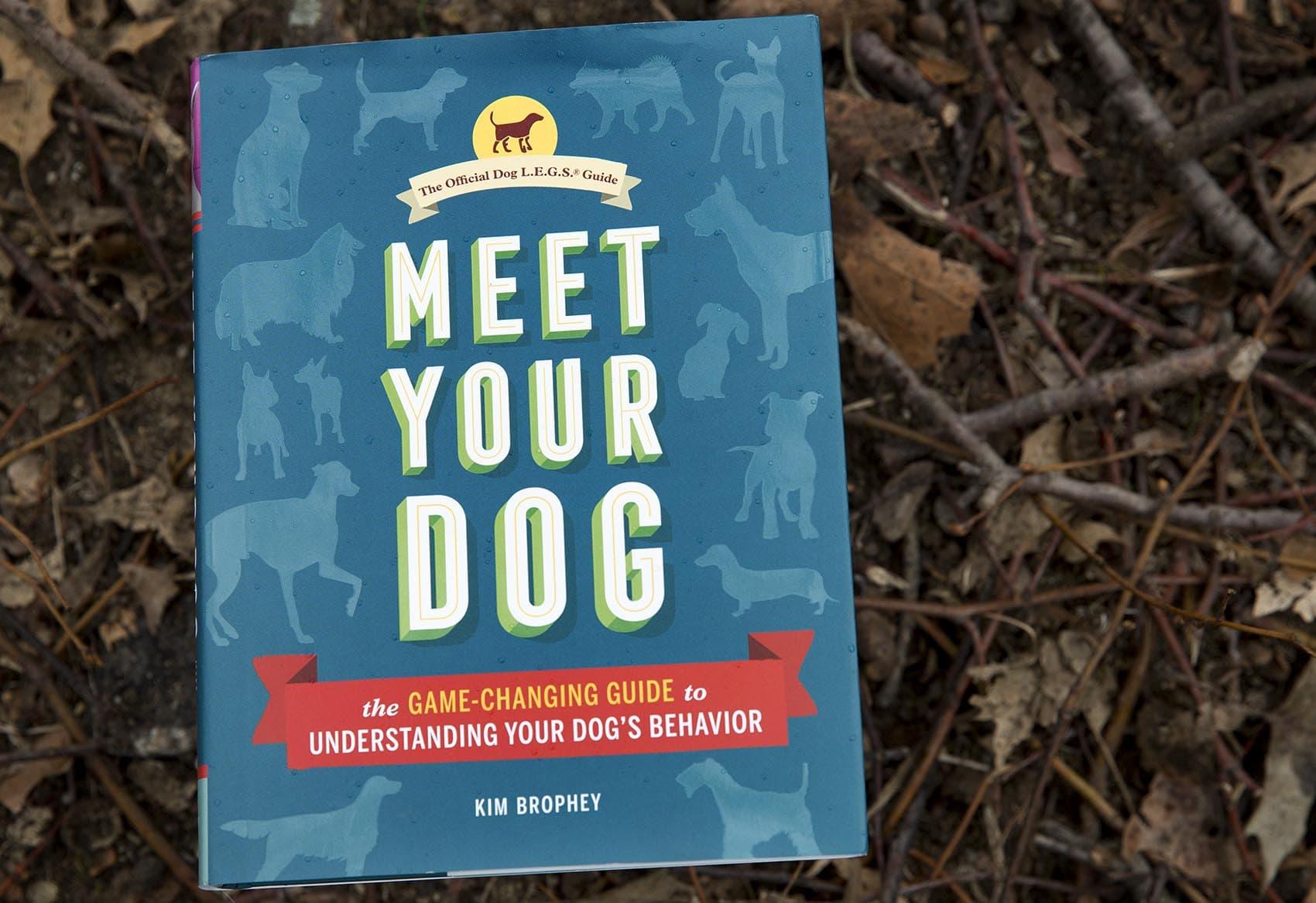 """Meet Your Dog,"" by Kim Brophey. (Robin Lubbock/WBUR)"