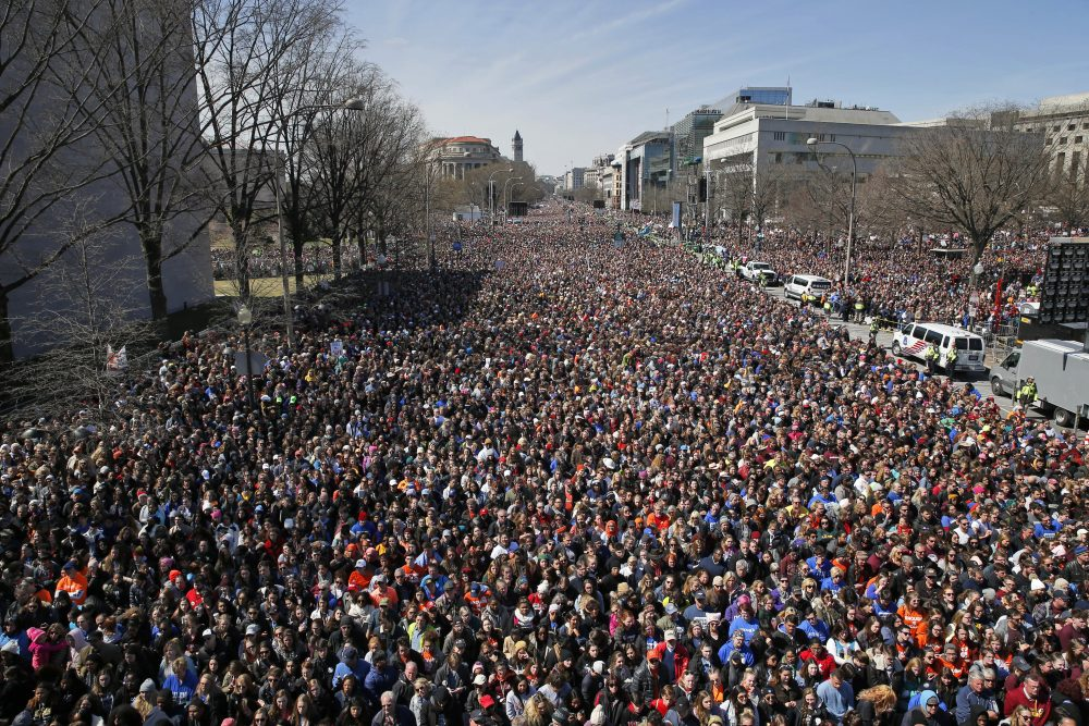 "The crowd fills Pennsylvania Avenue during the ""March for Our Lives"" rally in support of gun control, Saturday, March 24, 2018, in Washington. (Alex Brandon/AP)"