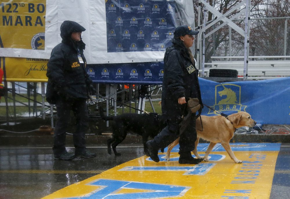 K-9 units cross the start line during a security patrol before the start of the 122nd running of the Boston Marathon in Hopkinton on Monday. (Mary Schwalm/AP)