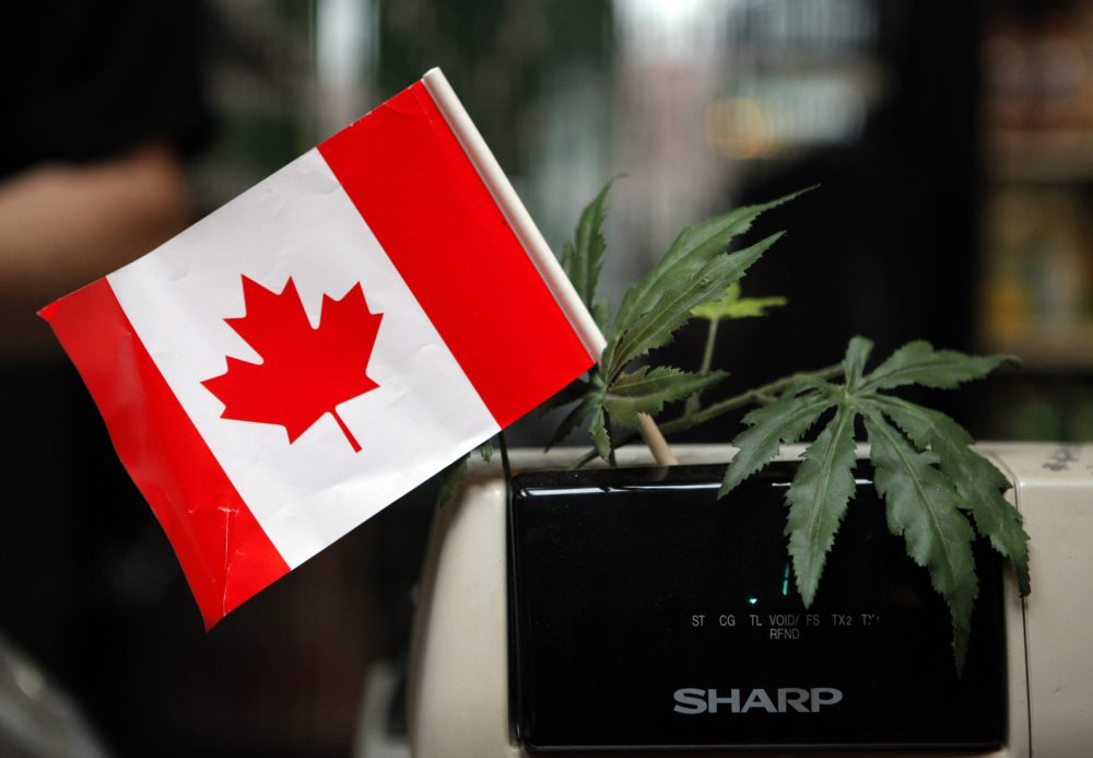A cash register adorned with a Canadian flag and imitation marijuana leaves at the BC Marijuana Party Headquarters in Vancouver, British Columbia. (Jae C. Hong/AP)