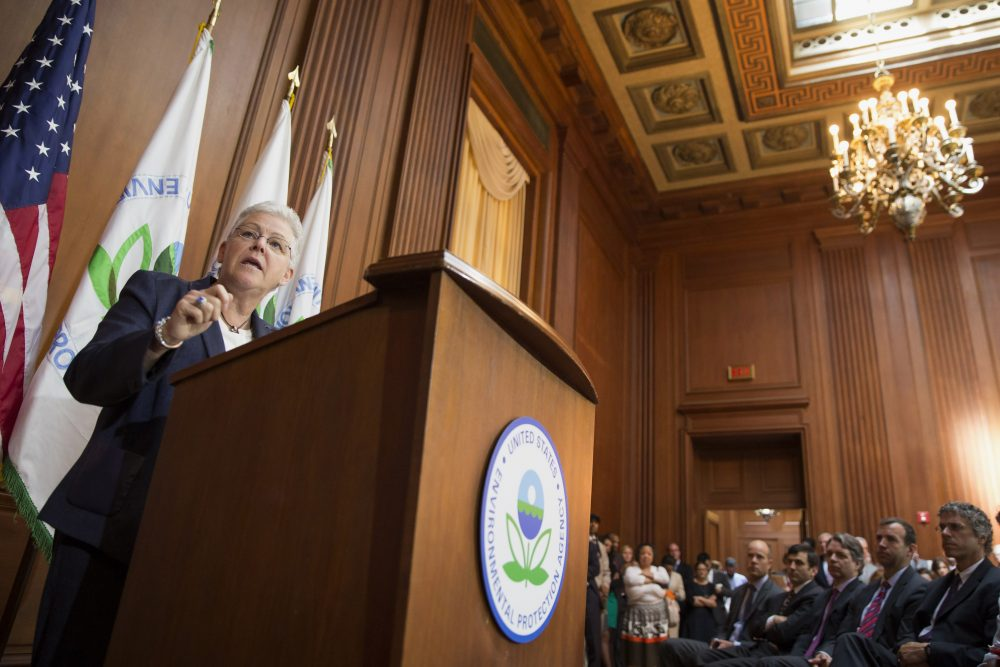 Former Environmental Protection Agency Administrator Gina McCarthy is pictured on June 2, 2014, at EPA headquarters in Washington. (Evan Vucci/AP)