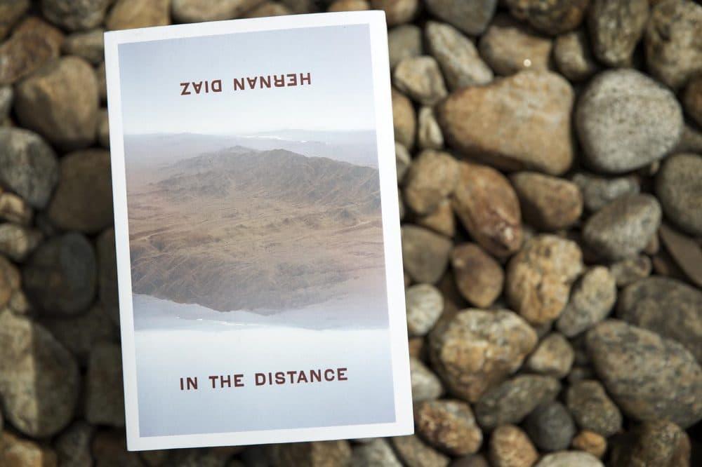 """In the Distance,"" by Hernan Diaz. (Robin Lubbock/WBUR)"
