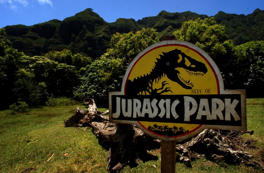 The site of famous dinosaur scenes at Kualoa Ranch in the valley of Kaaawa, Hawaii, May 11, 2005. (Lucy Pemoni/AP)