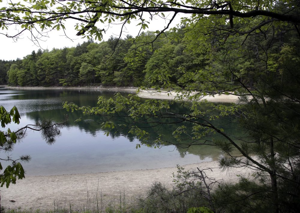 A view of Walden Pond in Concord, Mass. (Elise Amendola/AP)