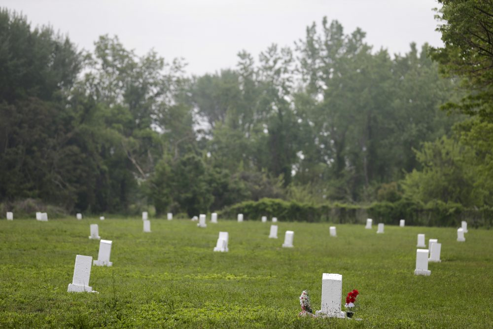 In this Wednesday, May 23, 2018 photo, white markers, each indicating a mass grave of about 150 people, are displayed on Hart Island in New York. (Seth Wenig/AP)