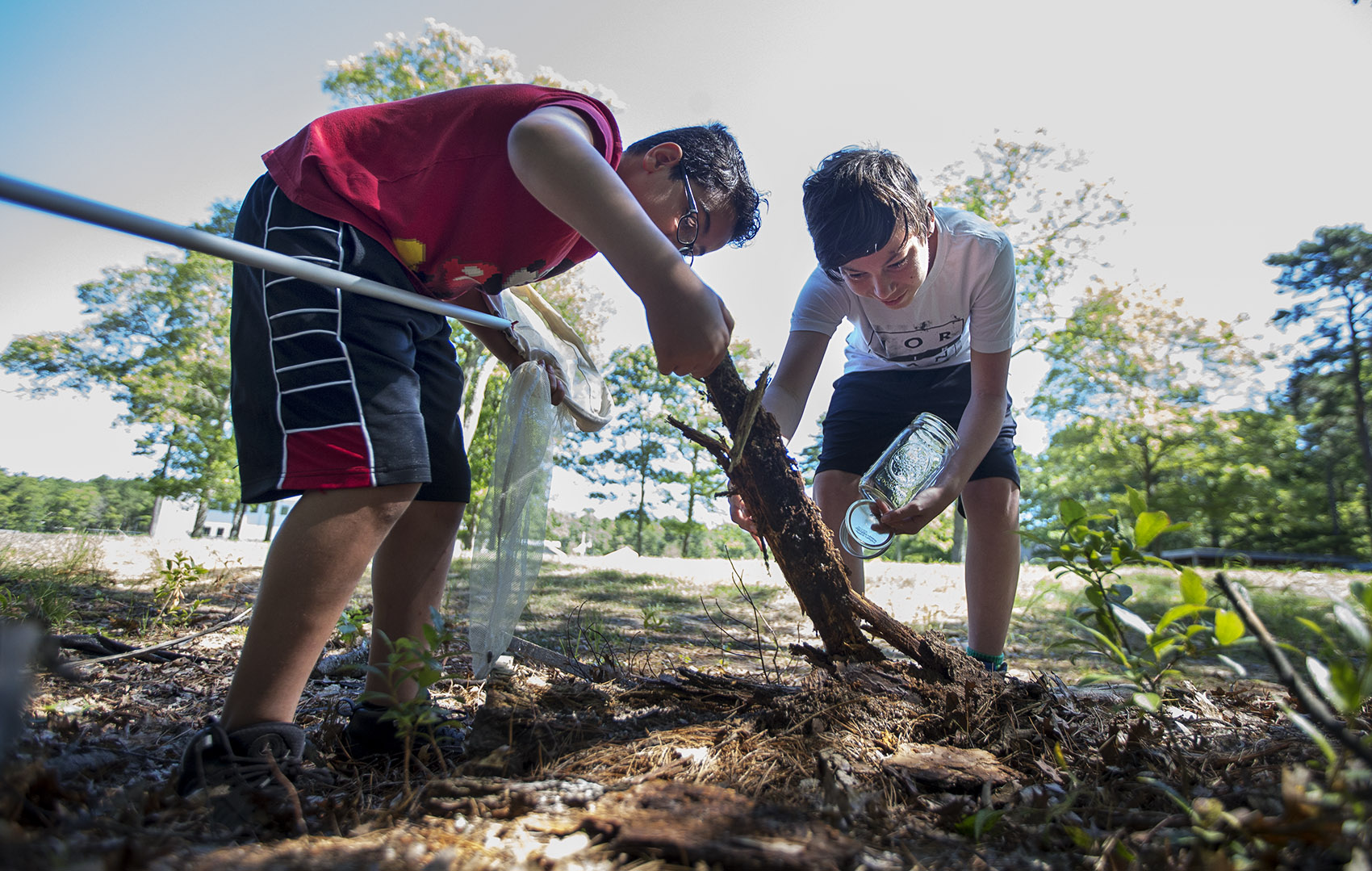 Isaiah Peters, 11, and Angel Peters, 13, lift a branch out of the ground looking for bugs to collect at the Mashpee Wampanoag science camp program. (Jesse Costa/WBUR)