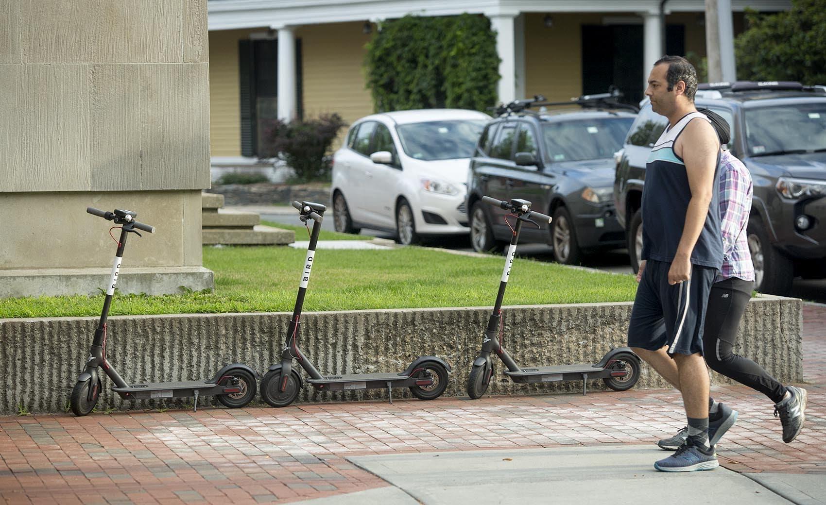 "A ""nest"" of Bird scooters on Mason Street in Cambridge, Mass. (Robin Lubbock/WBUR)"