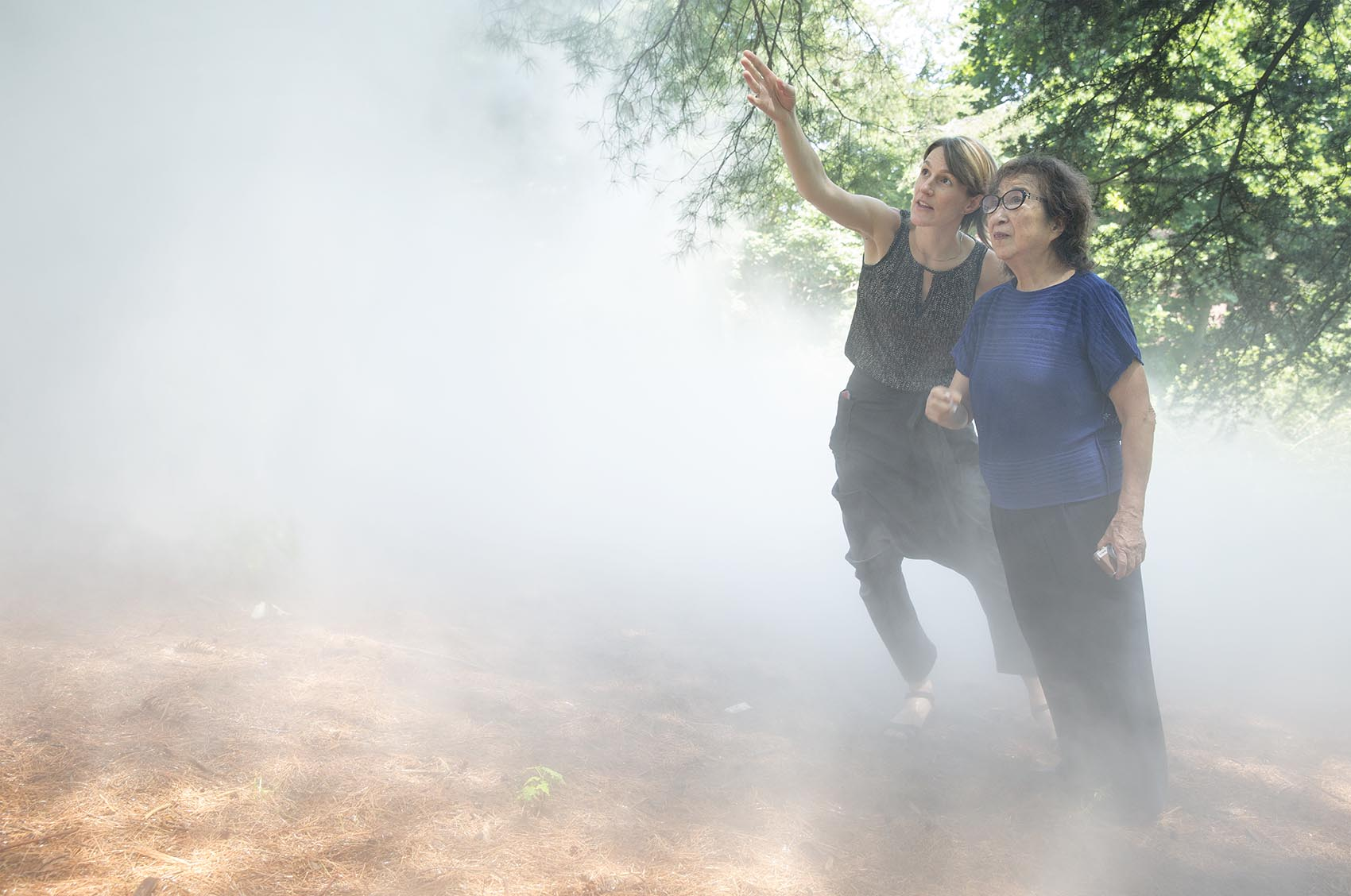 Contemporary art curator Jen Mergel and artist Fujiko Nakaya look up through the fog of the artist's installation at the Arnold Arboretum. (Robin Lubbock/WBUR)