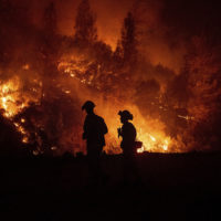 Firefighters monitor a backfire while battling the Ranch Fire, part of the Mendocino Complex Fire, on Tuesday, Aug. 7, 2018, near Ladoga, Calif. (Noah Berger/AP)