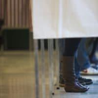 Voters in ballot booths (Jesse Costa/WBUR)