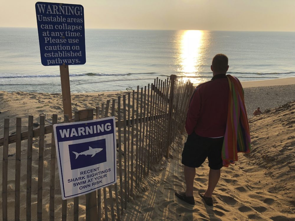 Steve McFadden, 49, of Plattsburgh, N.Y. gazes at Long Nook Beach in Truro on Thursday. Authorities closed the Cape Cod beach to swimmers after a man was attacked by a shark on Wednesday, the first attack on a person in Massachusetts since 2012. The unidentified victim survived the attack and was airlifted to a Boston hospital. (William J. Kole/AP)