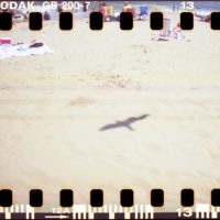 "Alison Church's ""Shadow,"" taken on a Sprocket Rocket camera using 200 speed 35 mm film. (Courtesy of the artist)"